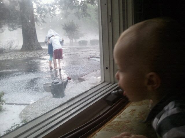 Baby Bridger watching the storm